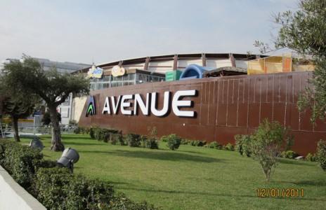 avenue_8